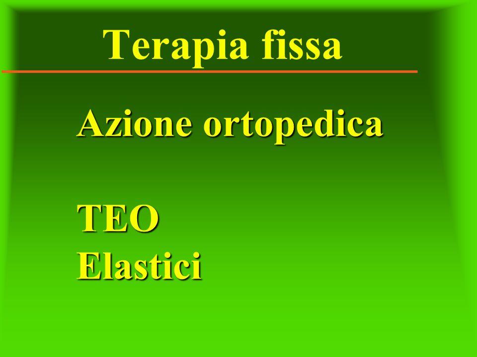 Terapia fissa Azione ortopedica TEO Elastici