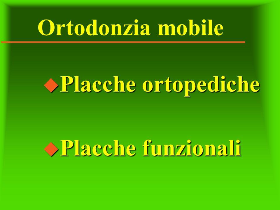 Ortodonzia mobile Placche ortopediche Placche funzionali
