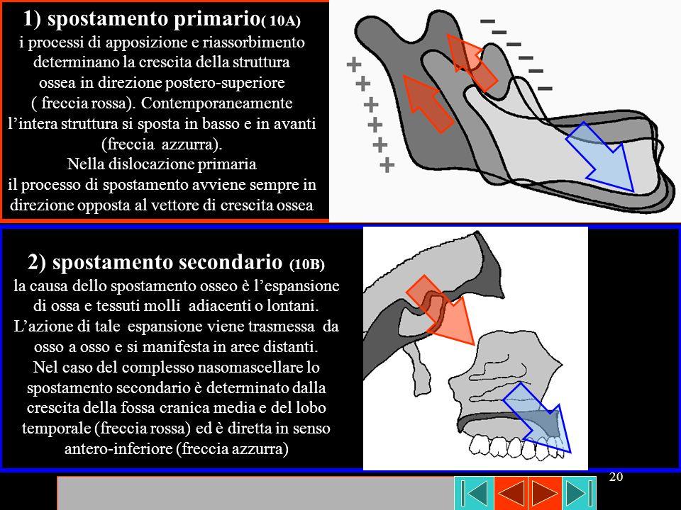 1) spostamento primario( 10A) 2) spostamento secondario (10B)