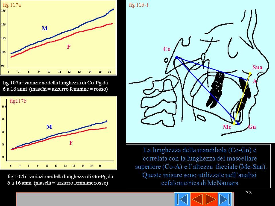 La lunghezza della mandibola (Co-Gn) è