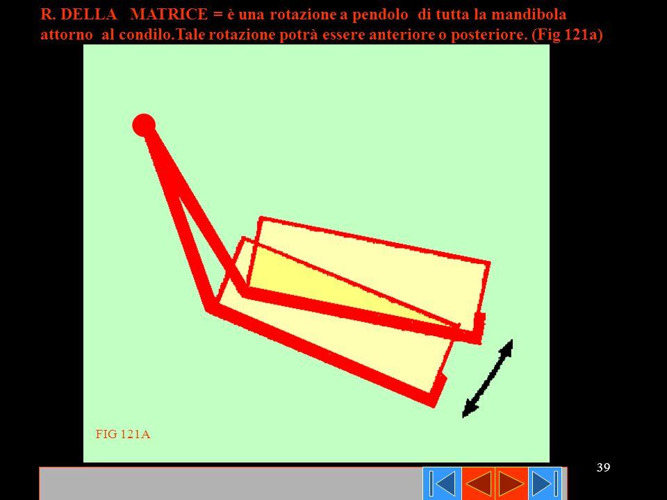 R. DELLA MATRICE = è una rotazione a pendolo di tutta la mandibola