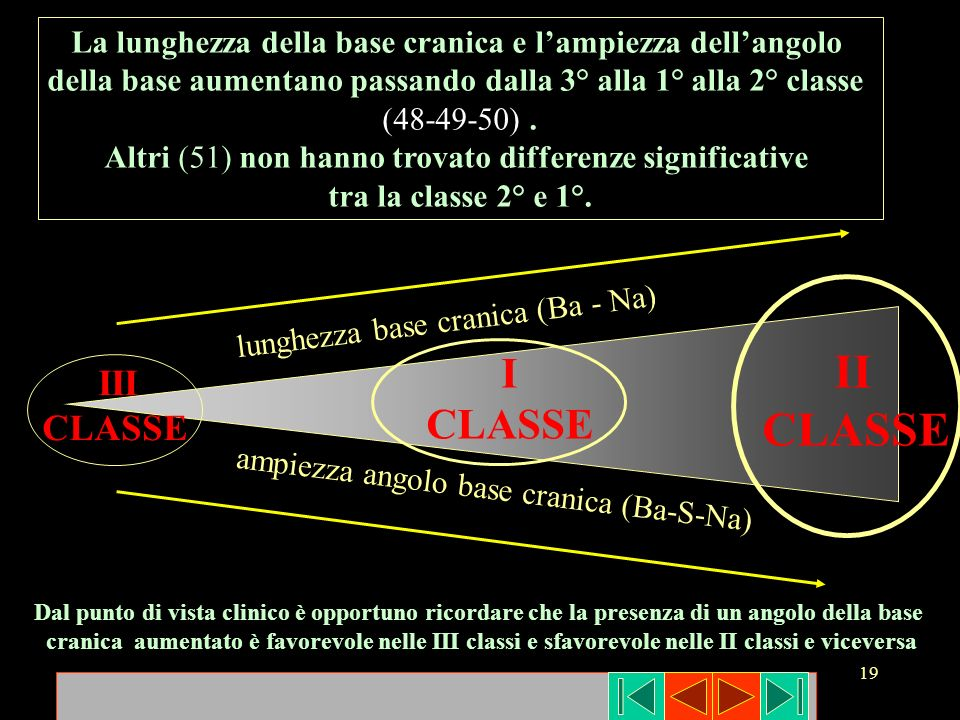 La lunghezza della base cranica e l'ampiezza dell'angolo