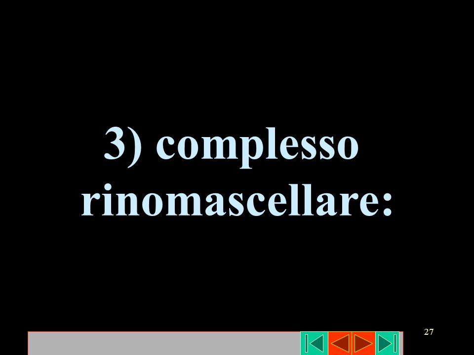 3) complesso rinomascellare: