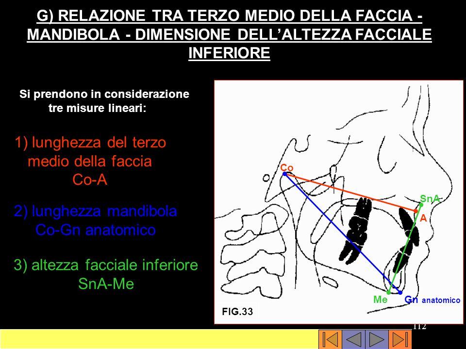 1) lunghezza del terzo medio della faccia Co-A