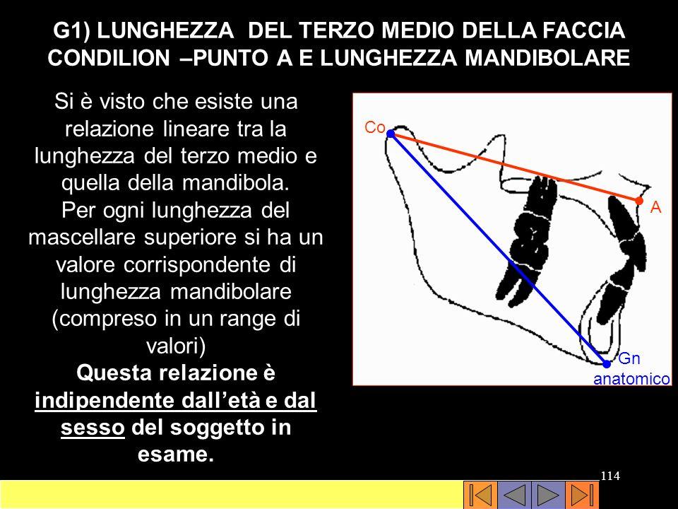 G1) LUNGHEZZA DEL TERZO MEDIO DELLA FACCIA CONDILION –PUNTO A E LUNGHEZZA MANDIBOLARE