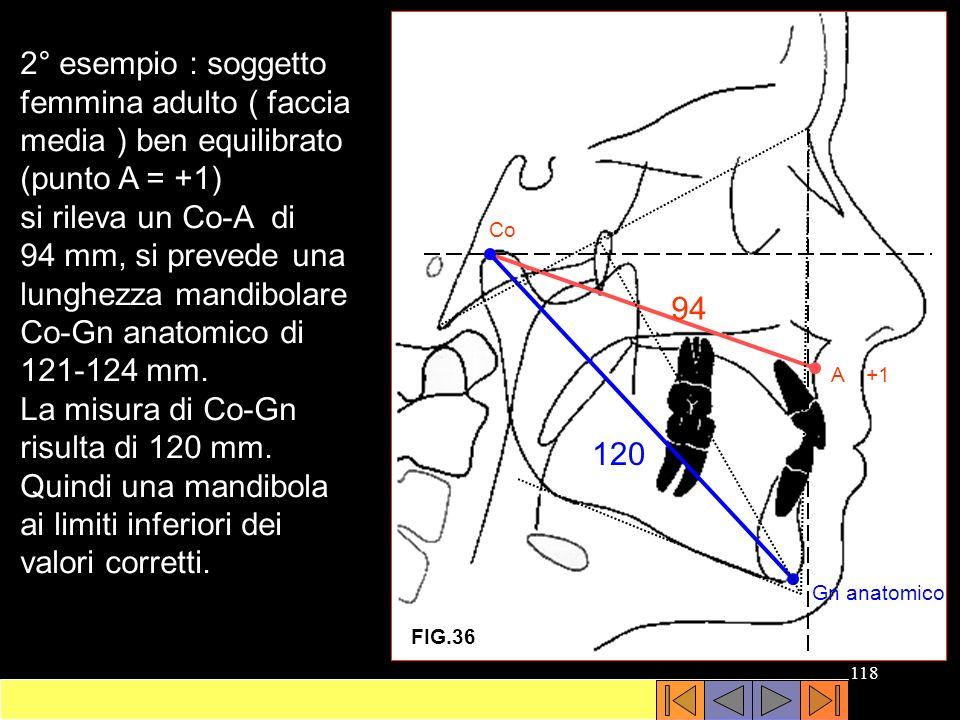 si rileva un Co-A di 94 mm, si prevede una lunghezza mandibolare