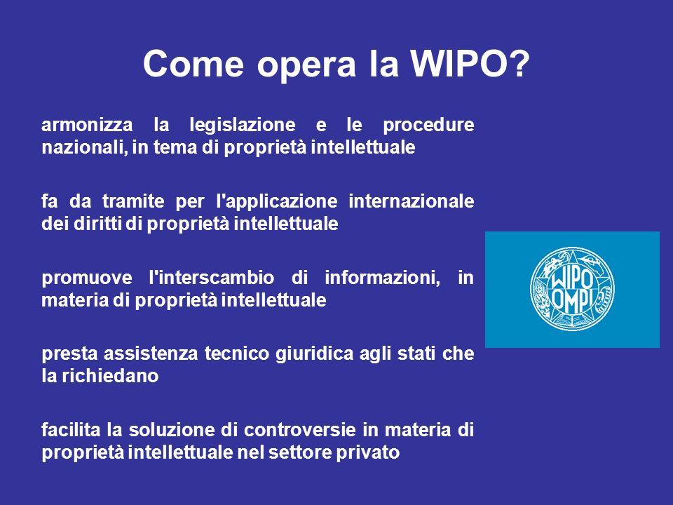 Come opera la WIPO armonizza la legislazione e le procedure nazionali, in tema di proprietà intellettuale.