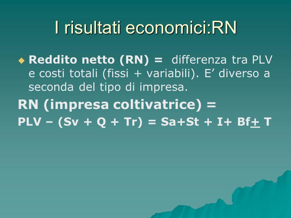 I risultati economici:RN