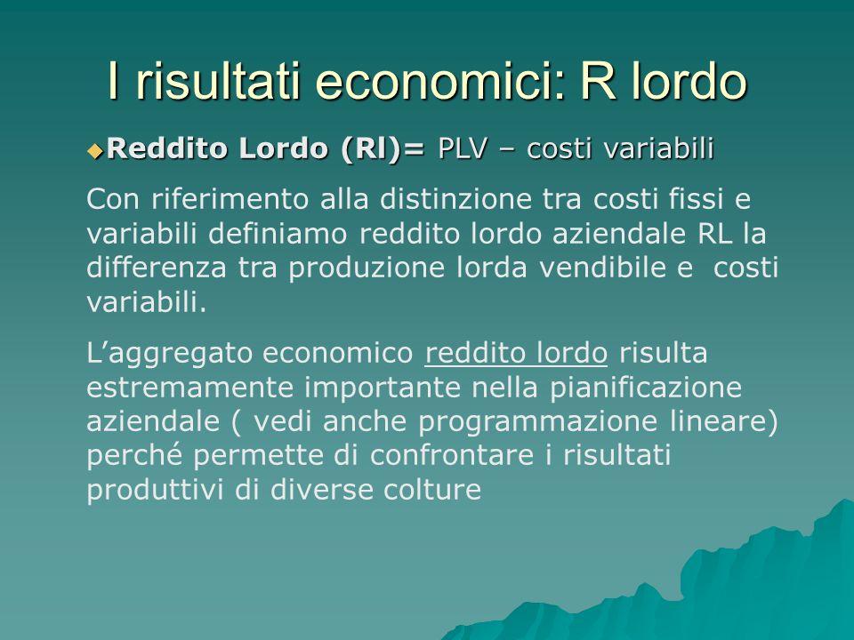 I risultati economici: R lordo