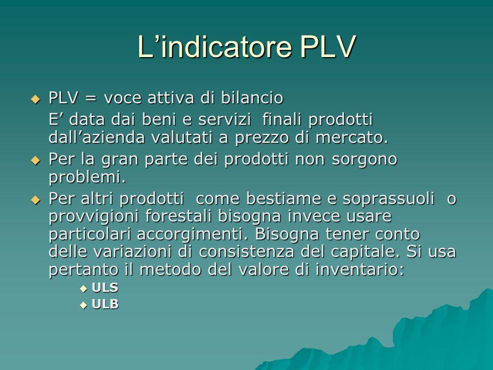 L'indicatore PLV PLV = voce attiva di bilancio