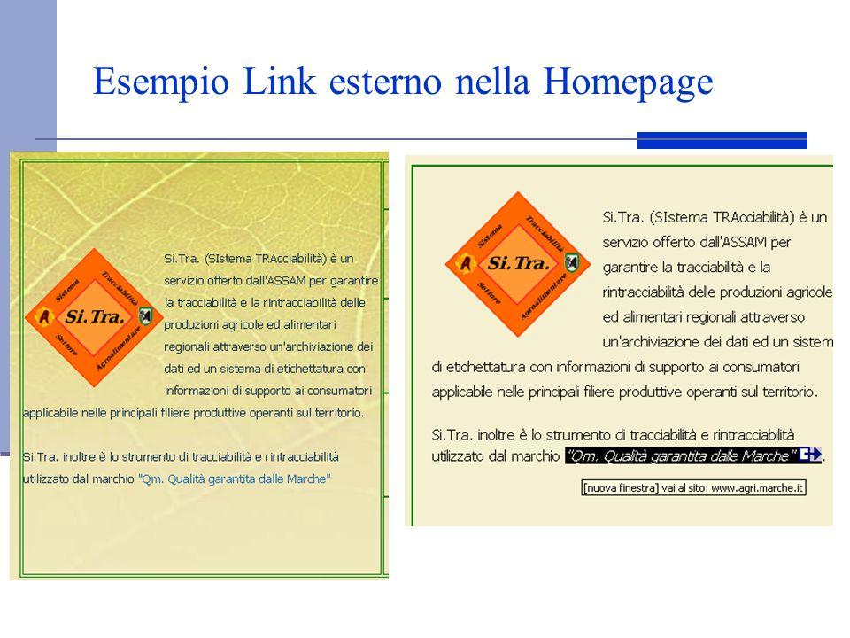 Esempio Link esterno nella Homepage