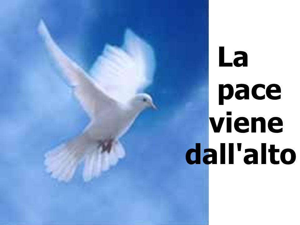 La pace viene dall alto