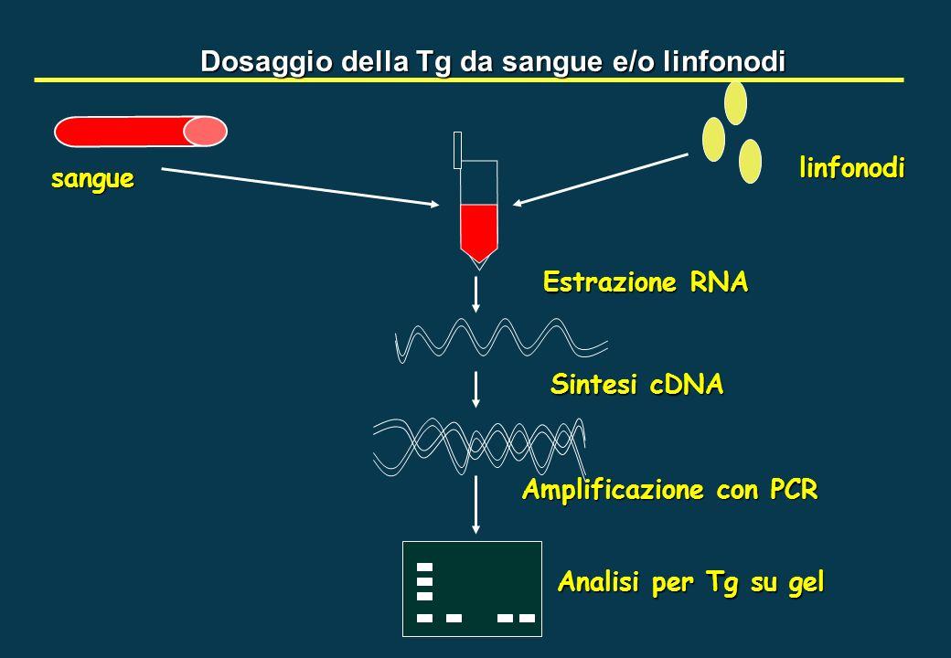 Dosaggio della Tg da sangue e/o linfonodi