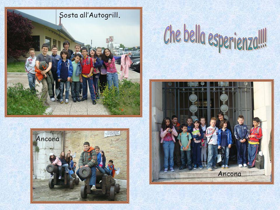 Sosta all'Autogrill. Che bella esperienza!!!! Ancona Ancona