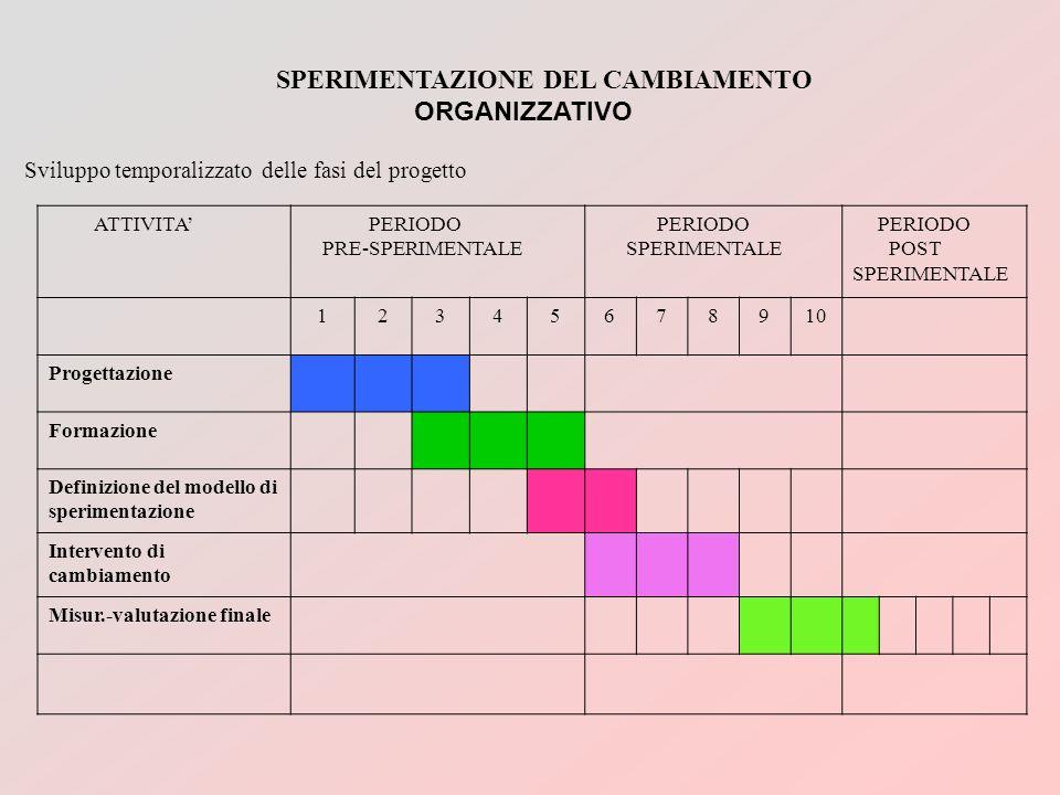 SPERIMENTAZIONE DEL CAMBIAMENTO ORGANIZZATIVO