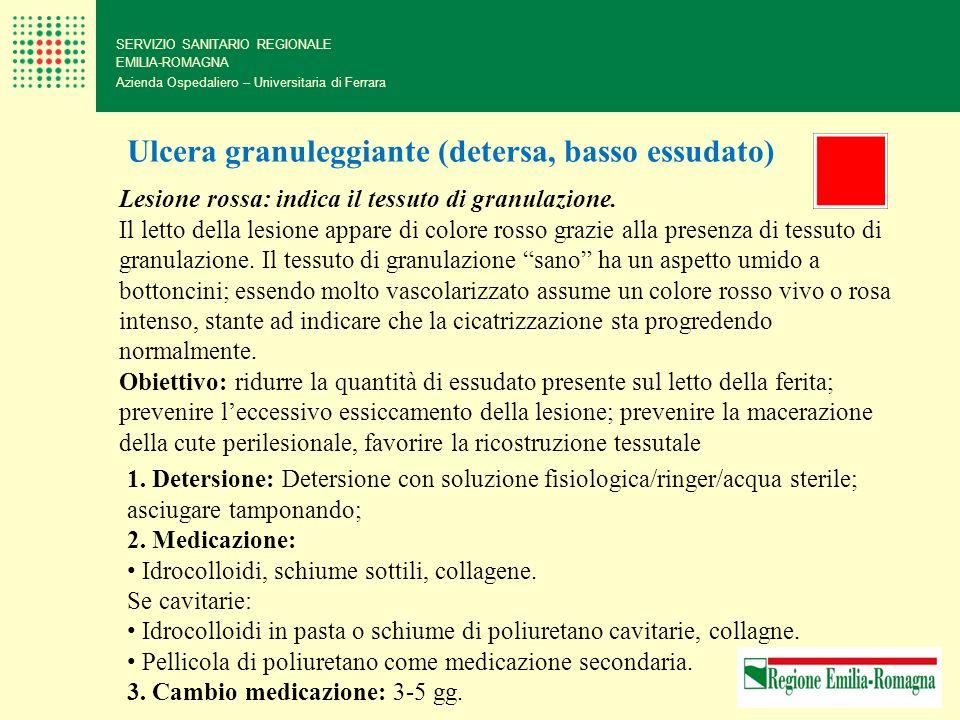 Ulcera granuleggiante (detersa, basso essudato)