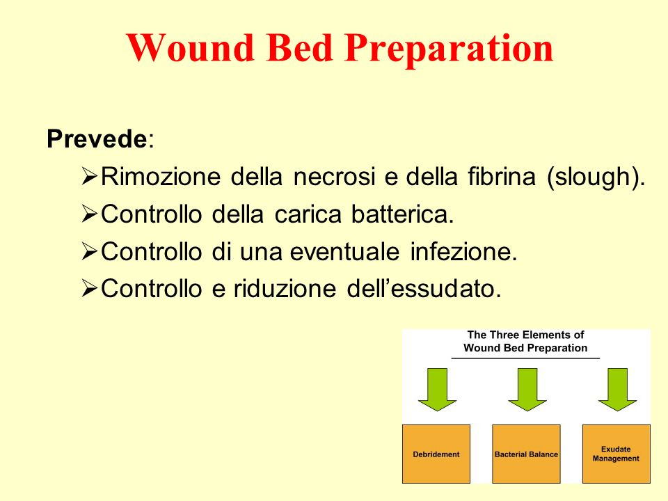 Wound Bed Preparation Prevede: