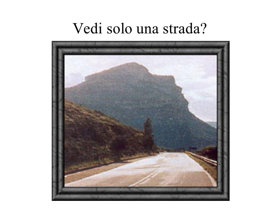 Vedi solo una strada