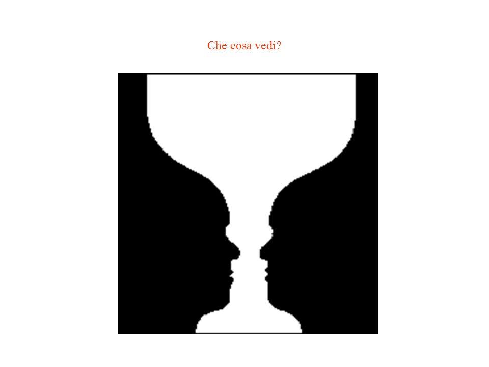 Che cosa vedi