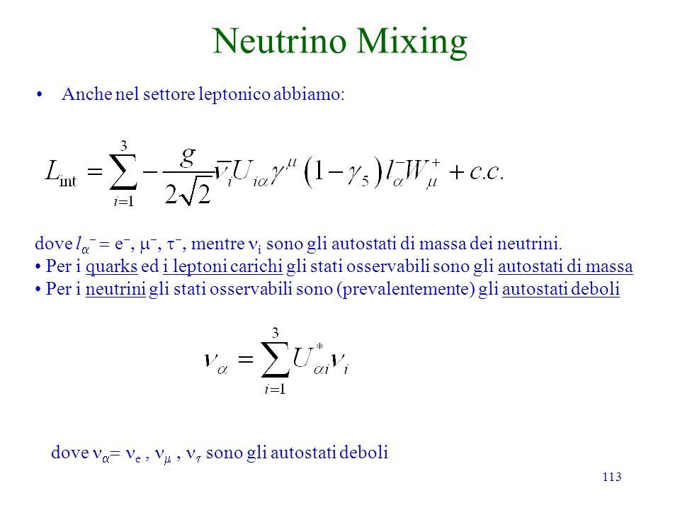 Neutrino Mixing Anche nel settore leptonico abbiamo:
