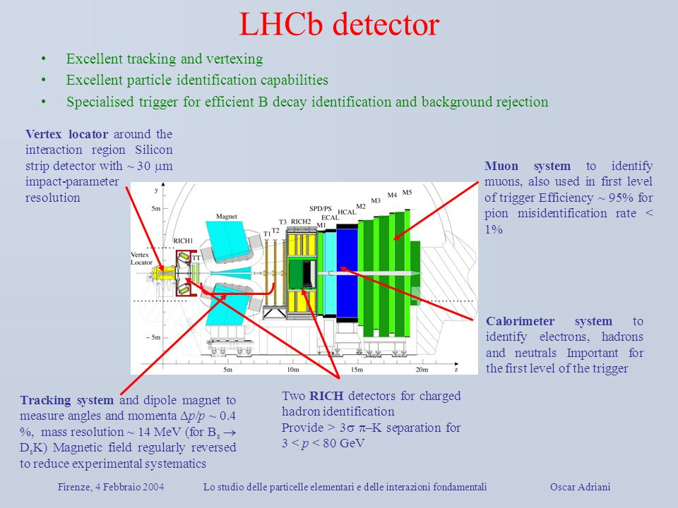 LHCb detector Excellent tracking and vertexing
