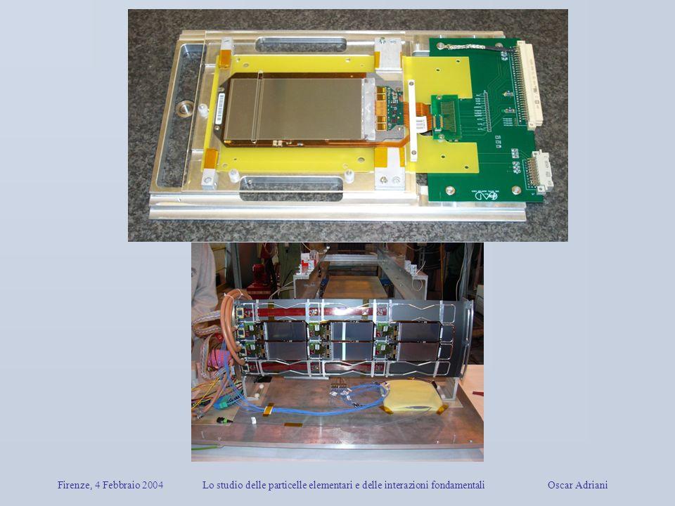 Firenze, 4 Febbraio 2004 Lo studio delle particelle elementari e delle interazioni fondamentali Oscar Adriani.