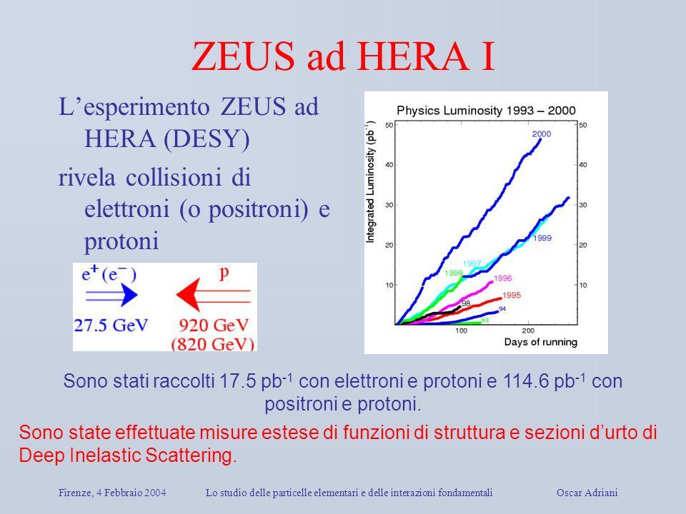 ZEUS ad HERA I L'esperimento ZEUS ad HERA (DESY)