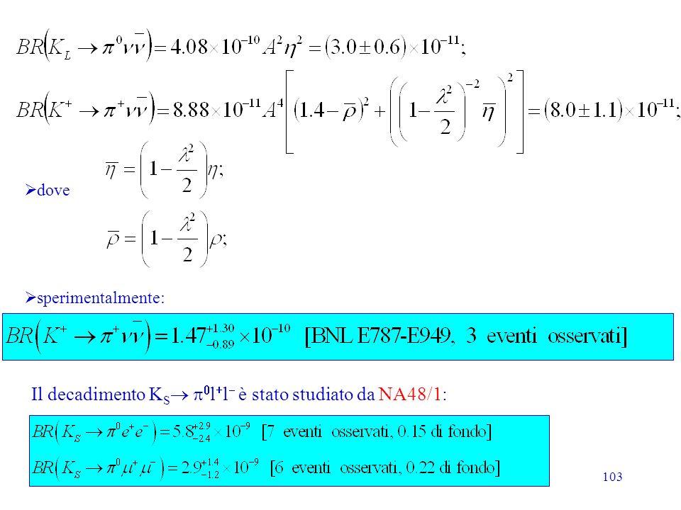 Il decadimento KS p0l+l- è stato studiato da NA48/1: