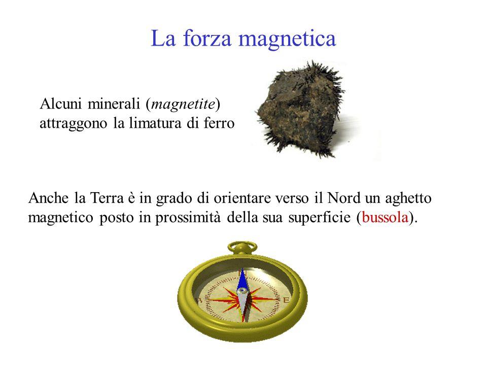 La forza magnetica Alcuni minerali (magnetite) attraggono la limatura di ferro.
