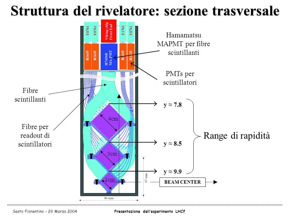 Struttura del rivelatore: sezione trasversale