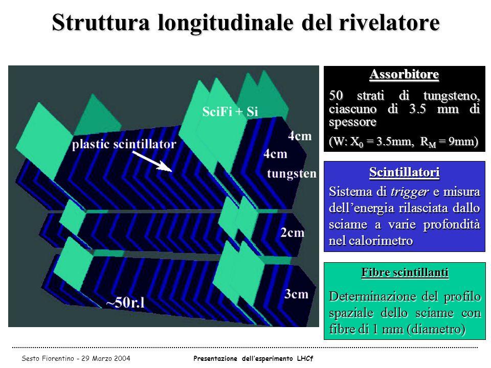 Struttura longitudinale del rivelatore