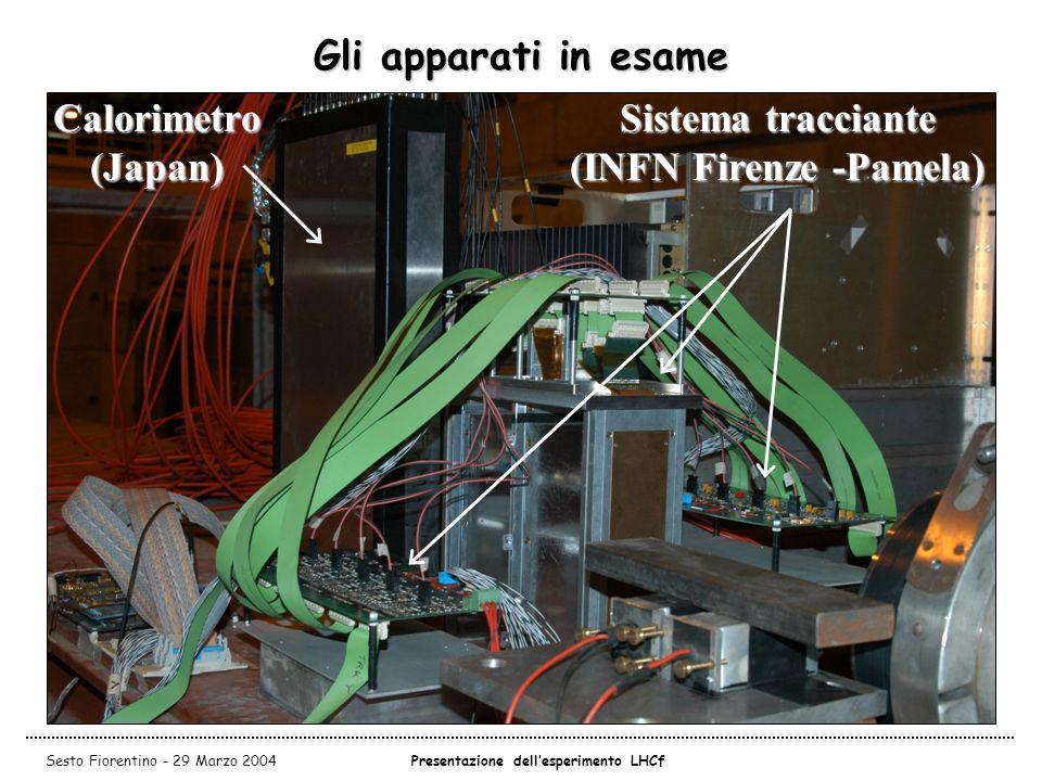 Sistema tracciante (INFN Firenze -Pamela)