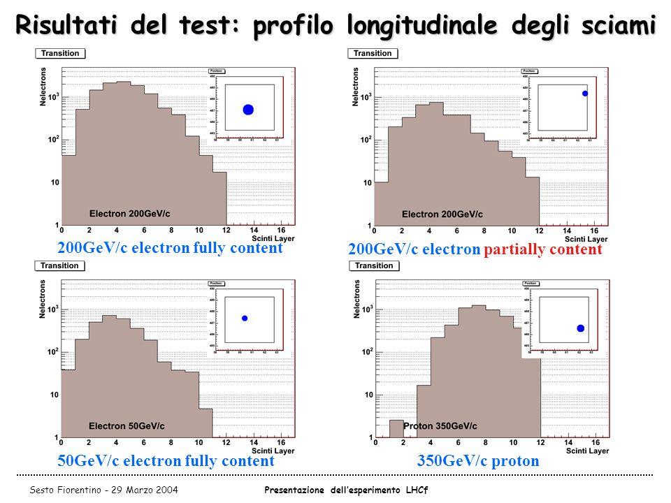 Risultati del test: profilo longitudinale degli sciami