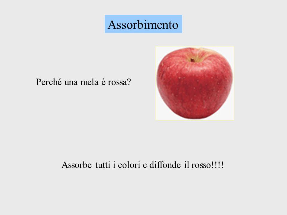 Assorbimento Perché una mela è rossa