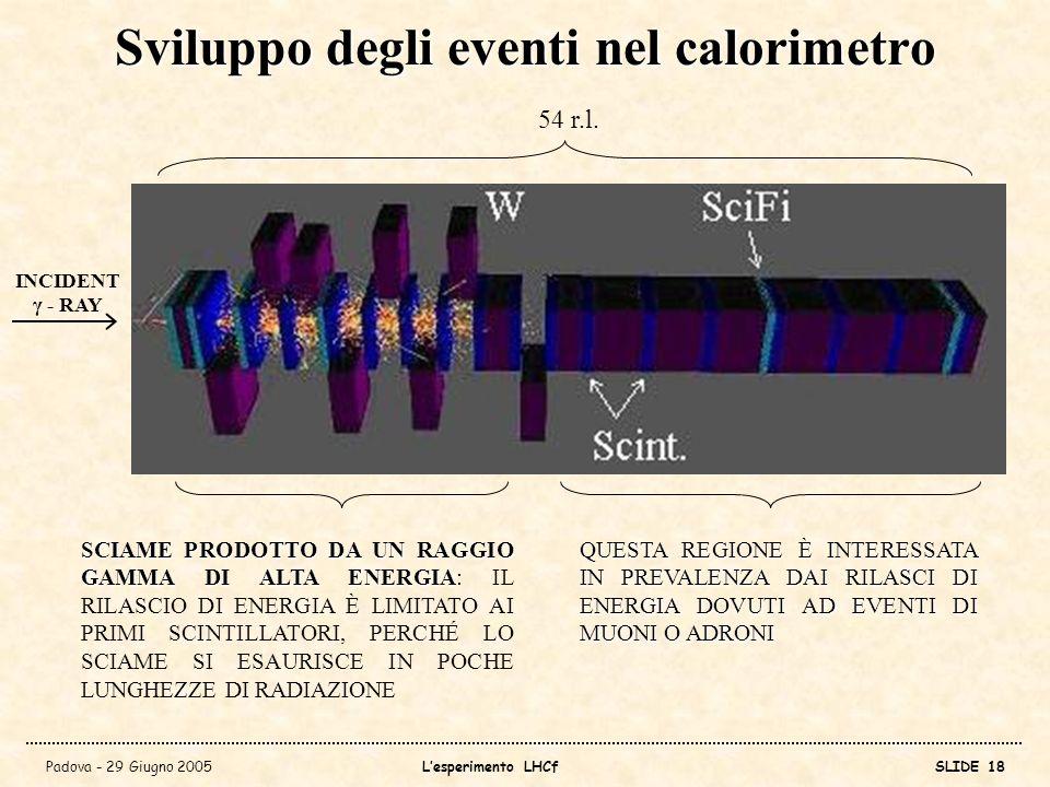 Sviluppo degli eventi nel calorimetro