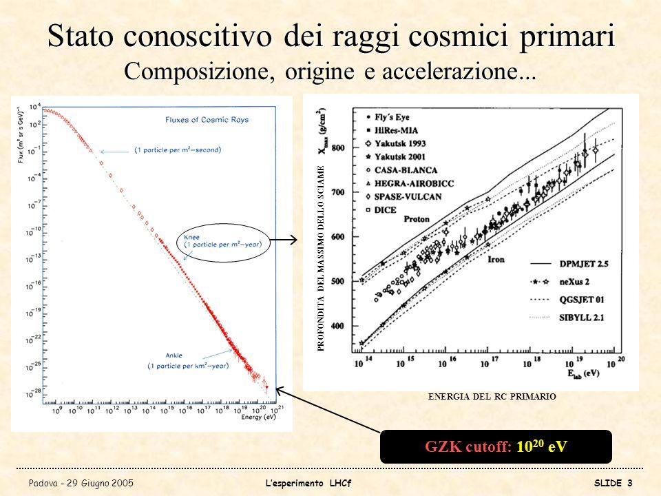 Stato conoscitivo dei raggi cosmici primari Composizione, origine e accelerazione...