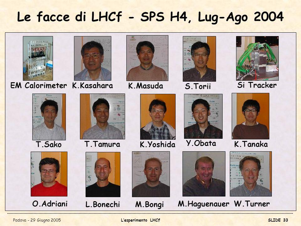 Le facce di LHCf - SPS H4, Lug-Ago 2004