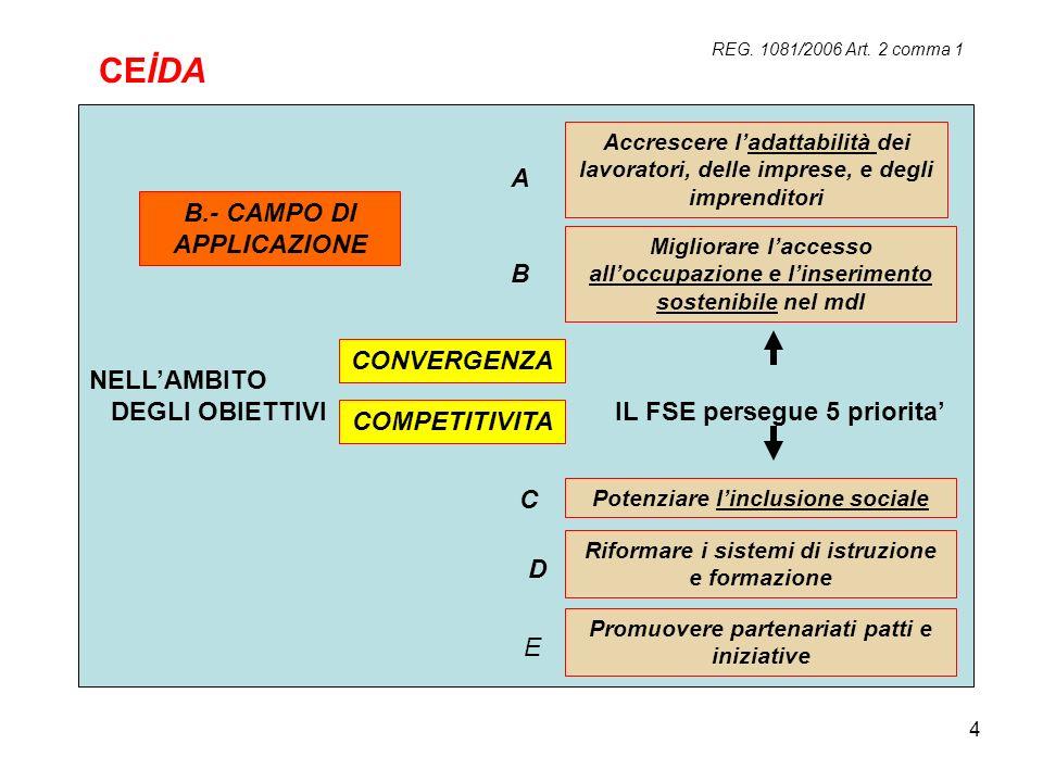 CEİDA A B.- CAMPO DI APPLICAZIONE NELL'AMBITO