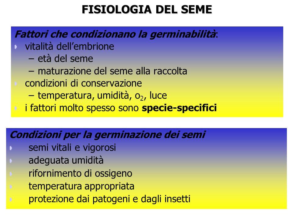 FISIOLOGIA DEL SEME Fattori che condizionano la germinabilità: