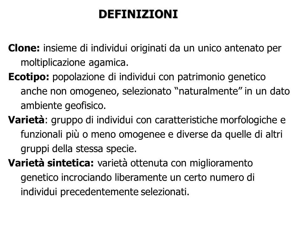 DEFINIZIONI Clone: insieme di individui originati da un unico antenato per moltiplicazione agamica.