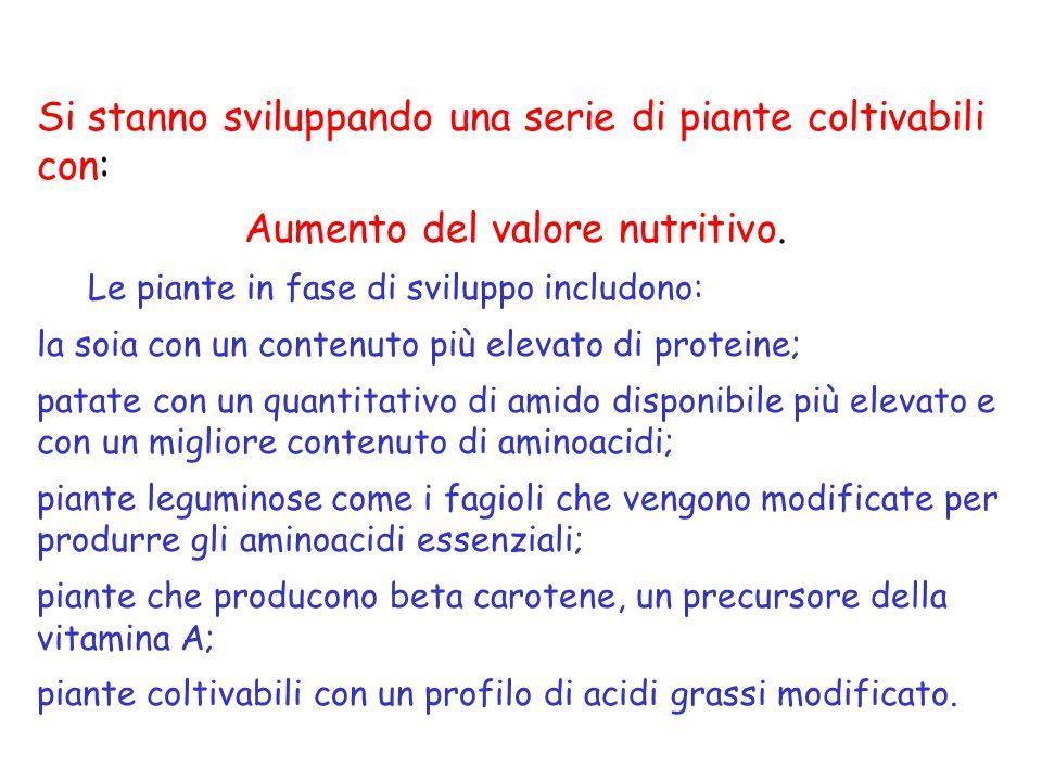 Si stanno sviluppando una serie di piante coltivabili con: