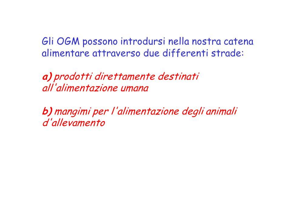 Gli OGM possono introdursi nella nostra catena alimentare attraverso due differenti strade: a) prodotti direttamente destinati all alimentazione umana b) mangimi per l alimentazione degli animali d allevamento