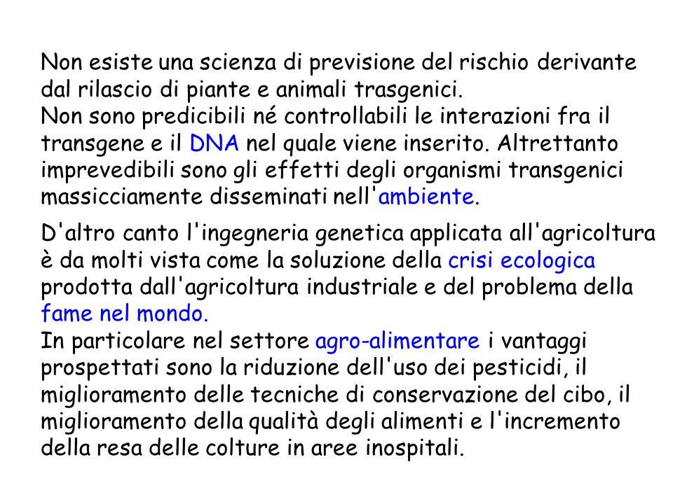 Non esiste una scienza di previsione del rischio derivante dal rilascio di piante e animali trasgenici. Non sono predicibili né controllabili le interazioni fra il transgene e il DNA nel quale viene inserito. Altrettanto imprevedibili sono gli effetti degli organismi transgenici massicciamente disseminati nell ambiente.