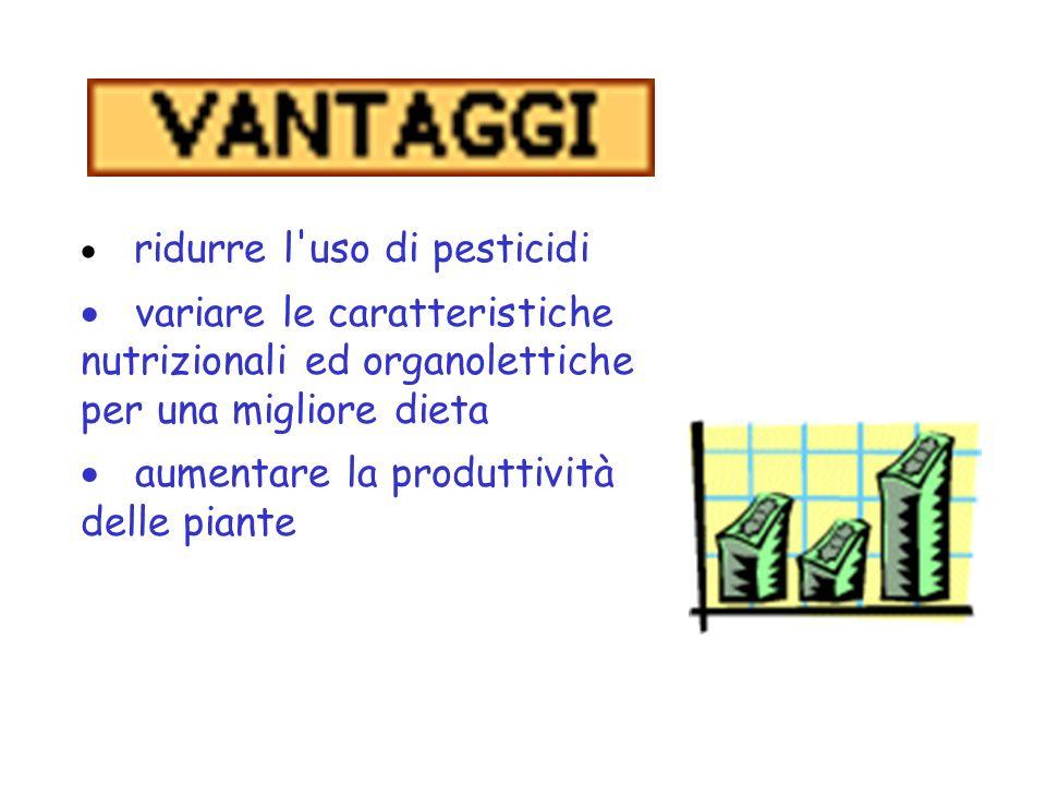 aumentare la produttività delle piante