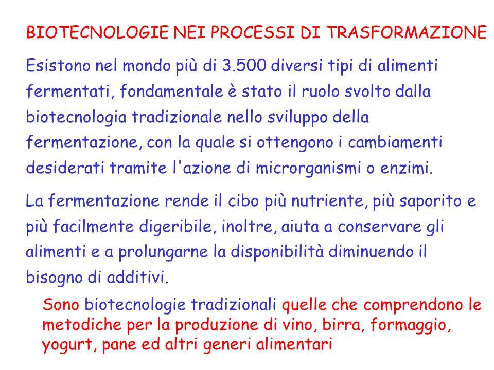 BIOTECNOLOGIE NEI PROCESSI DI TRASFORMAZIONE