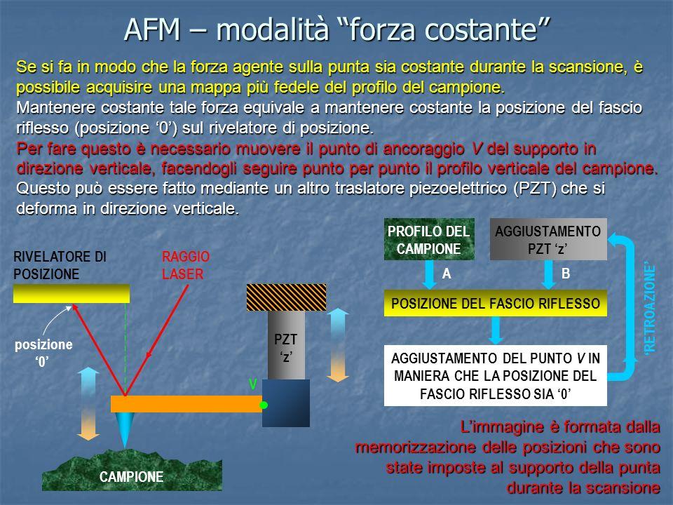 AFM – modalità forza costante