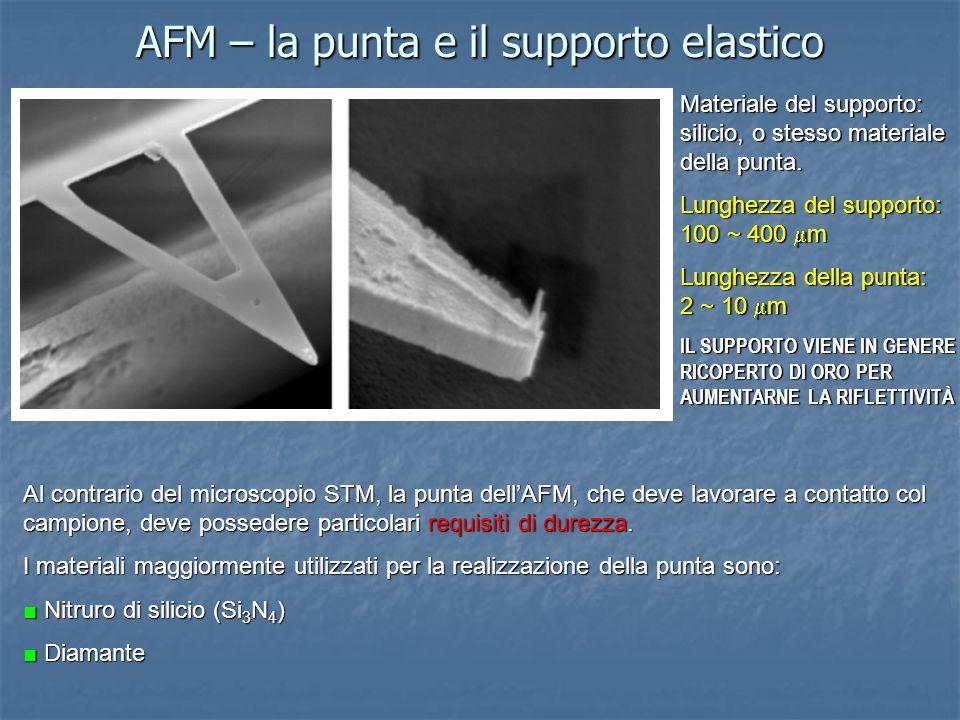AFM – la punta e il supporto elastico