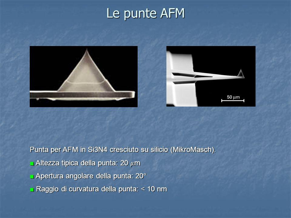 Le punte AFM Punta per AFM in Si3N4 cresciuto su silicio (MikroMasch).