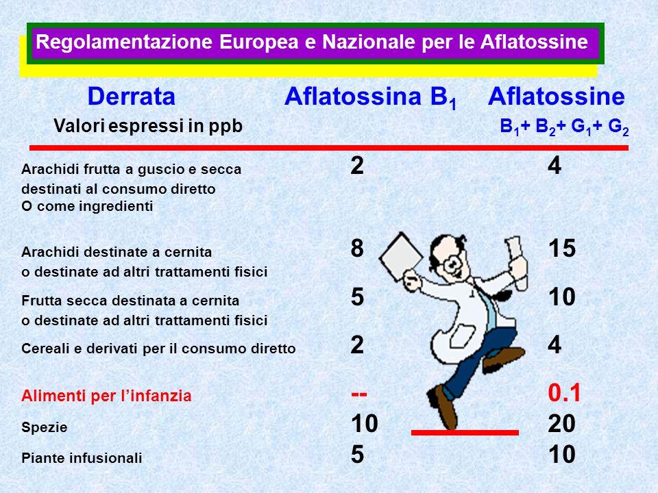 Derrata Aflatossina B1 Aflatossine