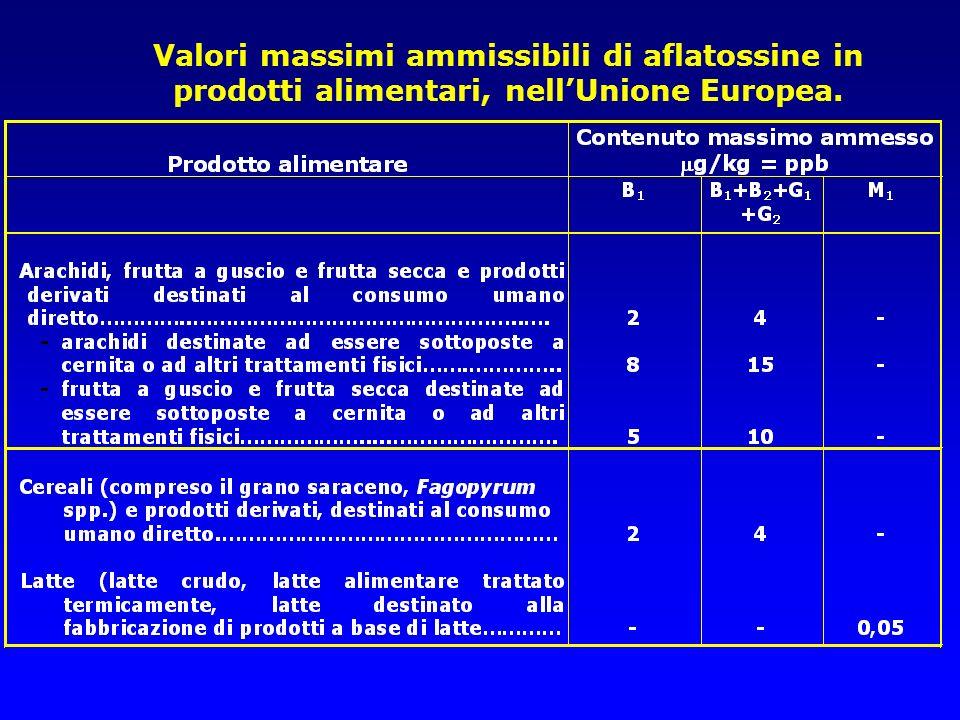 Valori massimi ammissibili di aflatossine in prodotti alimentari, nell'Unione Europea.